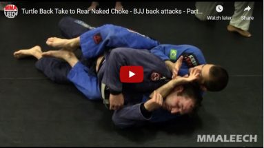 Taking the back from turtle to rear naked choke