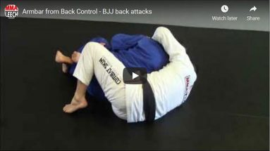 Back take & armbar