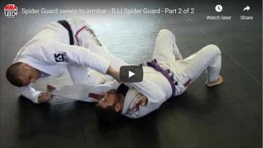 SPIDER GUARD SWEEP TO ARMBAR