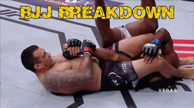 Fabricio Werdum's Armbar From The Back - BJJ Breakdown