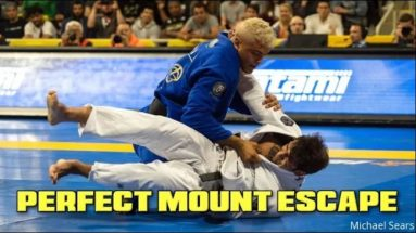 Perfect Mount Escape Against BJJ Black Belt World Champion